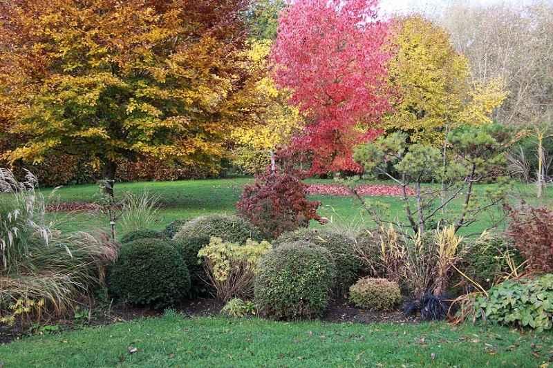 jardin©MichelPHILIPPE, l'Aulnaie