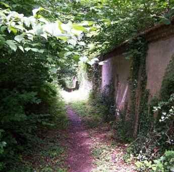 Bois du Défends - Louviers © OT Seine Eure