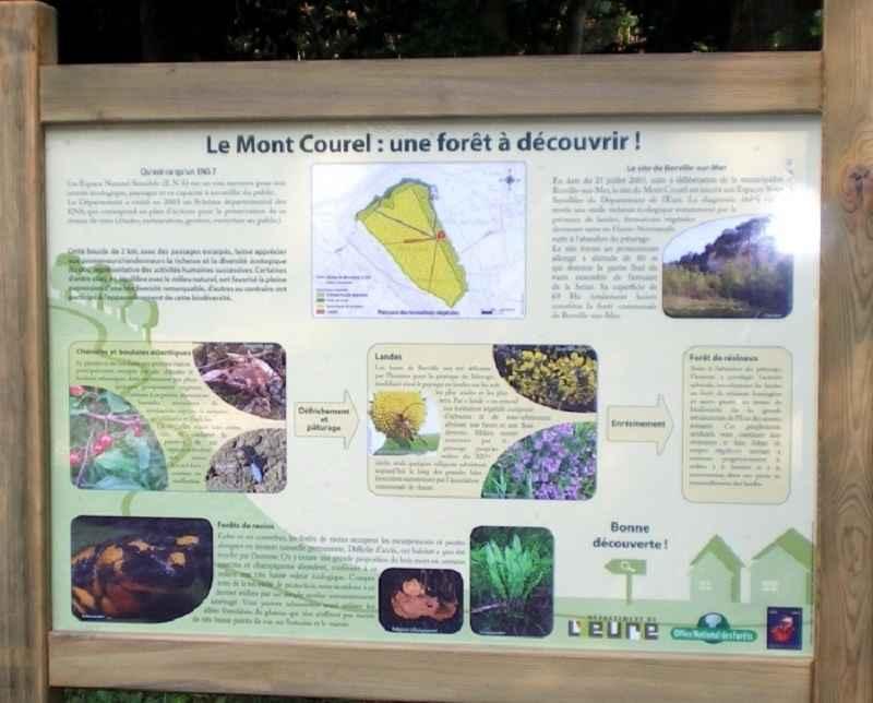 ENS La Forêt du Mont Courel © OT de Beuzeville