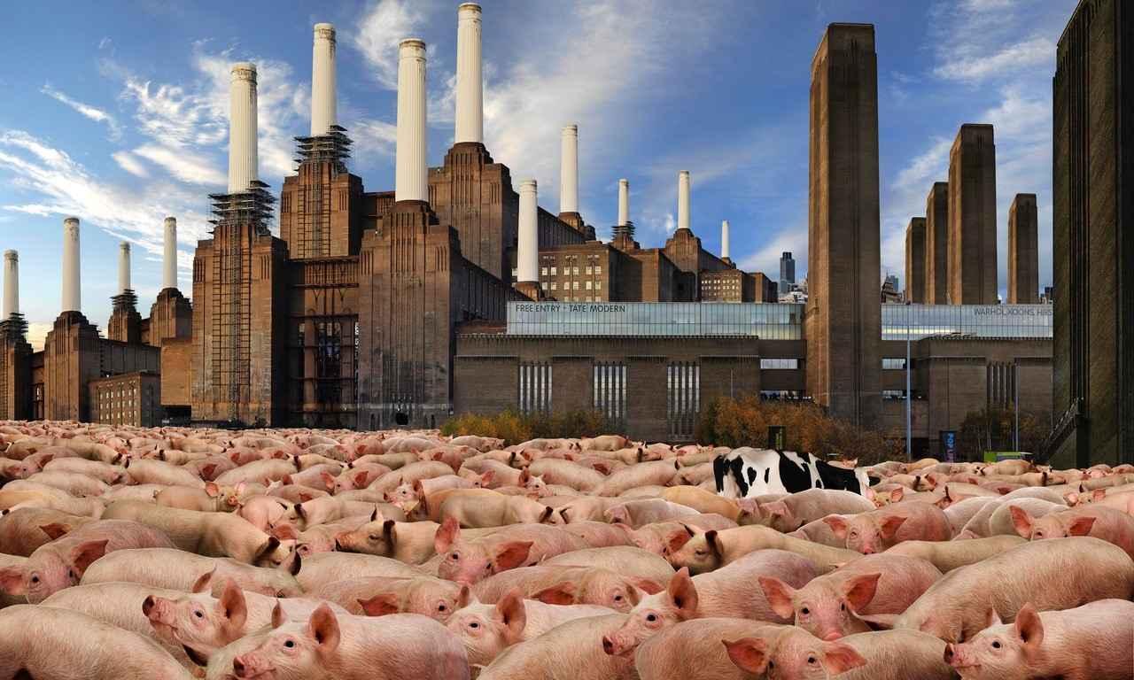 © J.F. Rauzier Tate Modern  (Série Animals) 2011-120 X 200 cm - Photographie