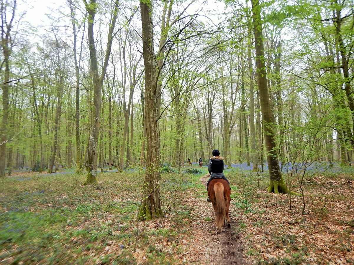 © L Epicurie randonnées équestres