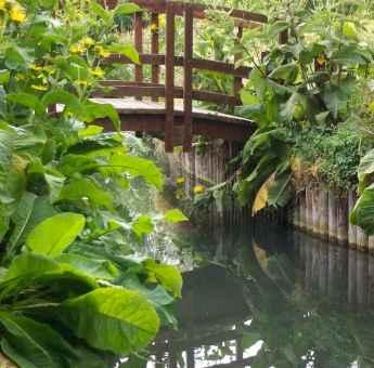 Jardin Aquatique de Broglie3 © Pays Risle-Charentonne