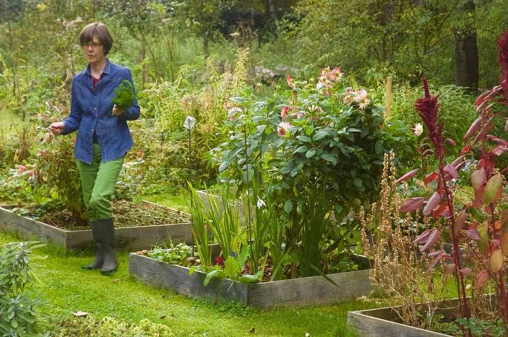 Potager de Mariane © Je cuisine mon jardin