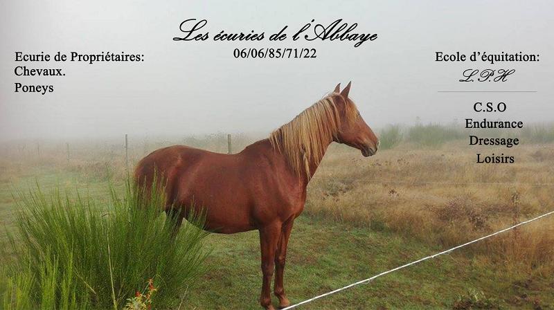 @lesécuriesdel'abbaye